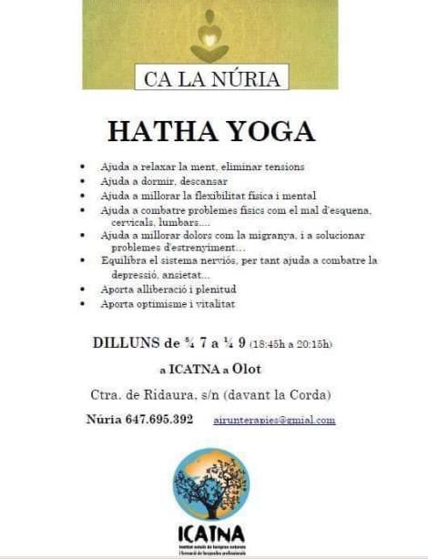 cartell hivern ioga 20152016